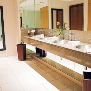 Luxurious Lavatory 1